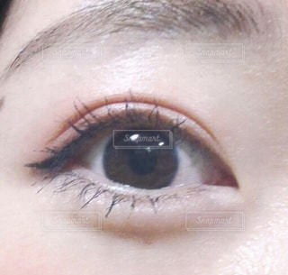 目の写真・画像素材[1858407]