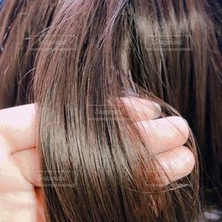 髪の写真・画像素材[1869468]