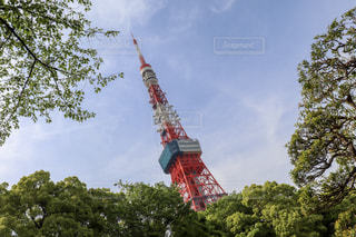 東京タワーの写真・画像素材[2084997]