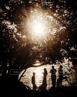 木の下の人の写真・画像素材[1857379]