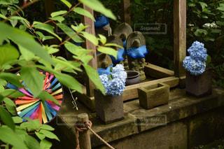 お地蔵さんと自然の中の青色の写真・画像素材[2221640]