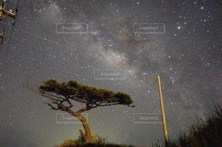 沖縄の星空の写真・画像素材[64360]