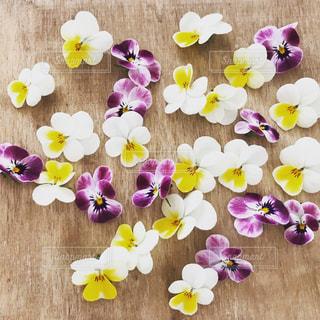 花の写真・画像素材[1952092]