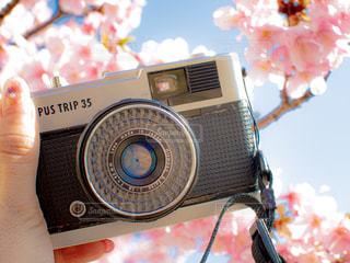 カメラを持っている手の写真・画像素材[2987922]