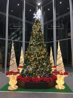 クリスマスツリーの写真・画像素材[2038884]