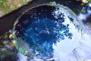 柿田川公園湧き水の写真・画像素材[1866998]