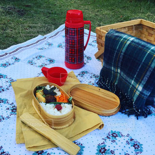 おひとりピクニックの写真・画像素材[1849576]