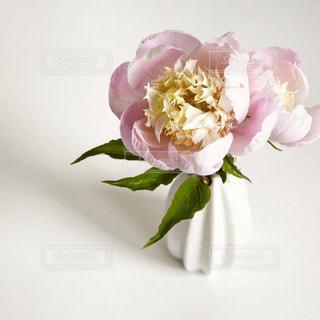 ピンクと白の花で一杯の花瓶の写真・画像素材[1850854]