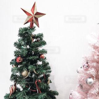 クリスマス ツリーの写真・画像素材[1851368]