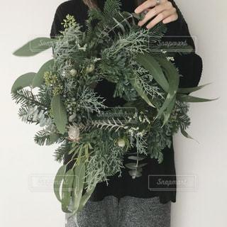 植物の花瓶の写真・画像素材[2771190]