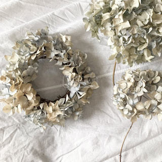 花をクローズアップするの写真・画像素材[2852449]