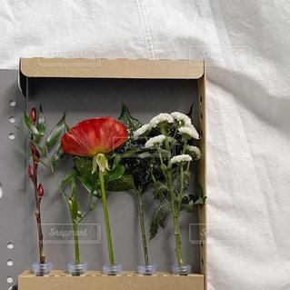 テーブルの上の花瓶の写真・画像素材[2874198]