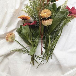 ベッドに座っている花瓶の写真・画像素材[2973430]