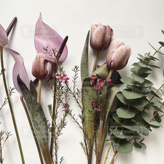 花のクローズアップの写真・画像素材[2987296]