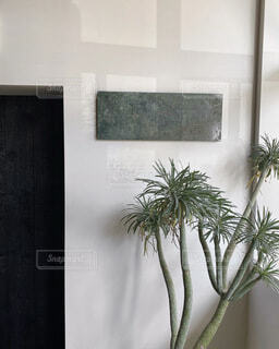 植物の花瓶の写真・画像素材[4065661]