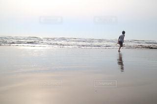春の海の写真・画像素材[1852789]