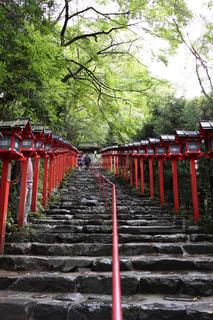 京都の写真・画像素材[1853504]