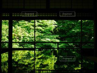 大きな窓の景色の写真・画像素材[1862596]