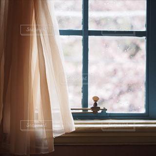 窓からお花見の写真・画像素材[1854017]