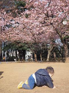 公園 - No.363331