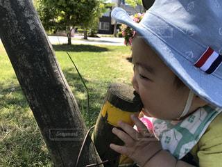 子ども - No.487599