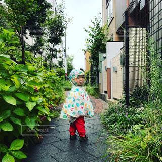 歩道の上を歩く少女 - No.718816