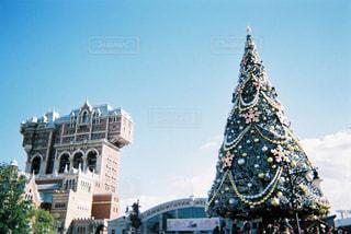 ディズニーシーのクリスマスツリー - No.884332