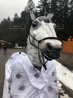 近くに馬のマスクを身に着けている人が…の写真・画像素材[1856300]
