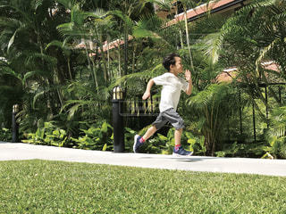 走る男の子の写真・画像素材[1866743]
