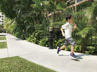 走る男の子の写真・画像素材[1866744]