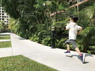 走る男の子の写真・画像素材[1866746]