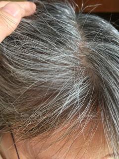 白髪の写真・画像素材[2204571]