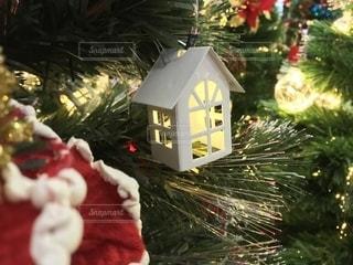 クリスマスツリーの写真・画像素材[2744437]