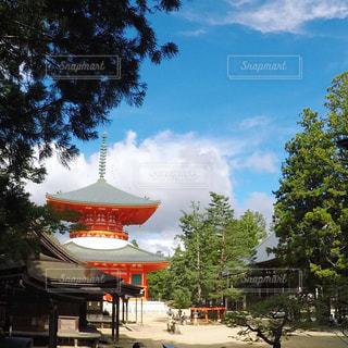 高野山 金剛峯寺の写真・画像素材[1857812]
