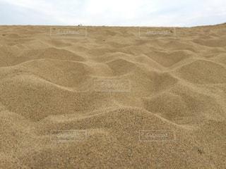 鳥取砂丘の写真・画像素材[1866949]