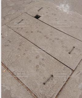 地面にある謎の足跡の写真・画像素材[1877122]