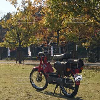 草の上駐車バイクの写真・画像素材[866974]