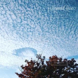 秋の空の写真・画像素材[915367]
