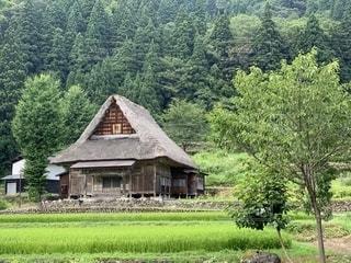 緑豊かな森の真ん中にある家の写真・画像素材[2374873]