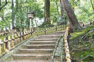 公園の木製ベンチ - No.964639
