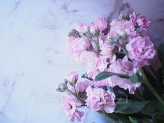 花束の写真・画像素材[3154804]