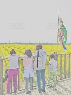 菜の花畑と鯉のぼりを眺めるの写真・画像素材[1986820]