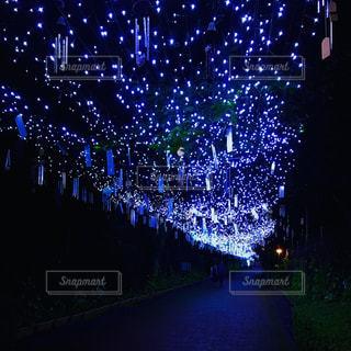 夜にライトアップされた橋の写真・画像素材[2303214]