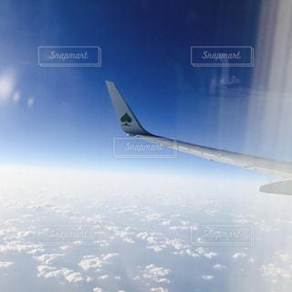 飛行機の翼の写真・画像素材[1878415]