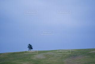 近くに緑のフィールドのの写真・画像素材[2077823]