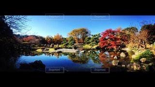 自然の写真・画像素材[122574]