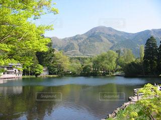 由布院の超有名スポットの金鱗湖の写真・画像素材[2147328]