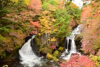 秋の竜頭ノ滝の写真・画像素材[2127553]