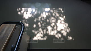 影がキラキラの写真・画像素材[2156429]