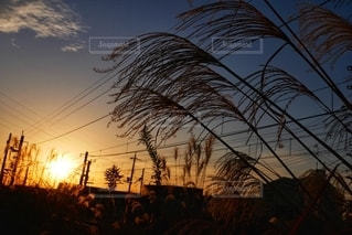 線路沿いの景色の写真・画像素材[2734321]